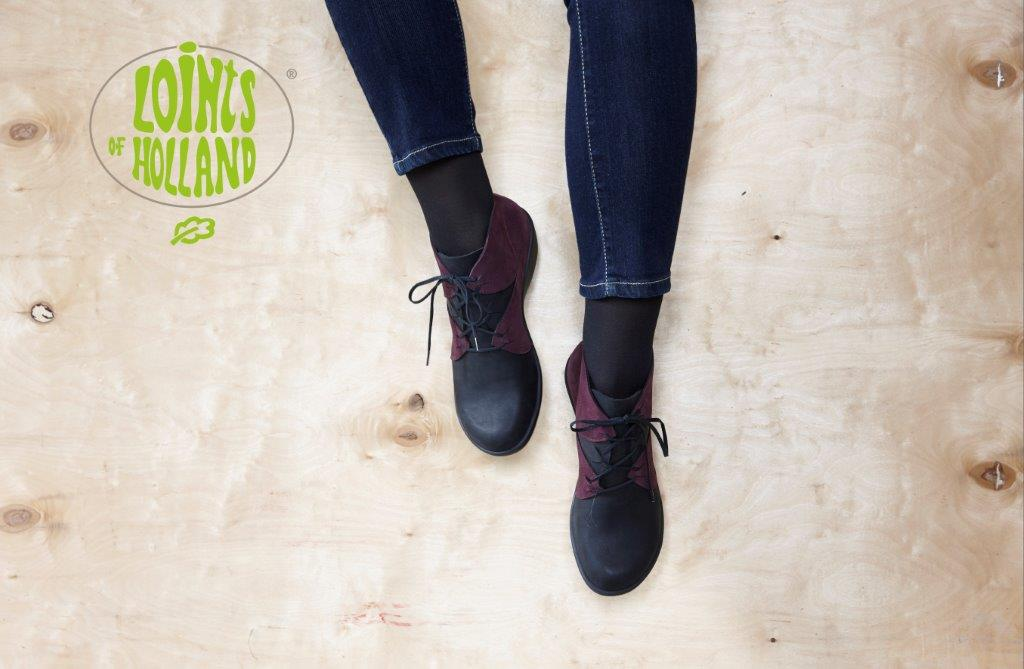 <div class='slider_caption'> <h1><h5><strong>Welkom bij Gezond Lopen</strong></h5> Onze voeten vormen de basis van ons lichaam, daarom is het belangrijk om ze aandacht te geven. Veel lichamelijke klachten hangen samen met voetproblemen. Slecht passende schoenen veroorzaken vaak een verkeerde belasting...<br/><br/></h1> <a class='slider-readmore' href='http://www.gzl.nl/wp-content/uploads/2016/headers/header2016-01.jpg'>Lees verder</a> </div>